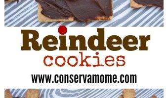 Reindeer Cookies – Adorable & Fun Christmas Kid Craft Treat