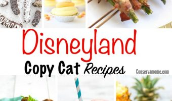 Disneyland Copy Cat Recipes