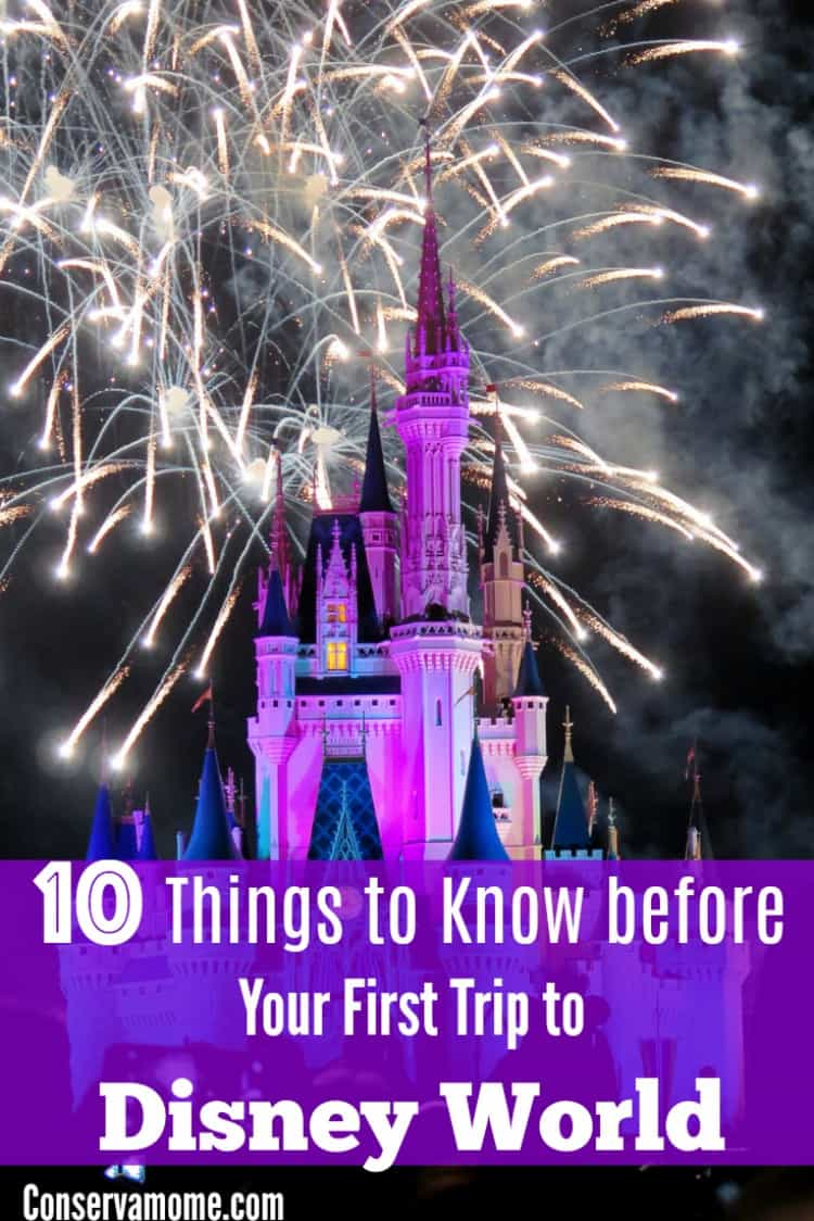 Heading to Disney World for the first time? Here are 10 Things to Know before Your First Trip to Disney World!