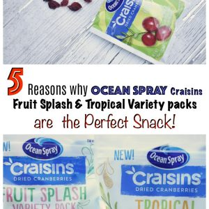 5 Reasons why Ocean Spray Craisins Are the Perfect Snack!