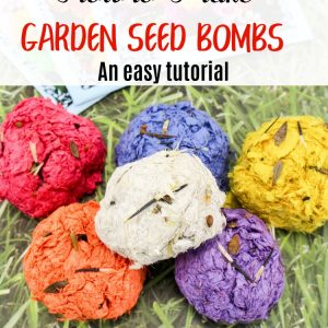 How to Make Garden Seed Bombs