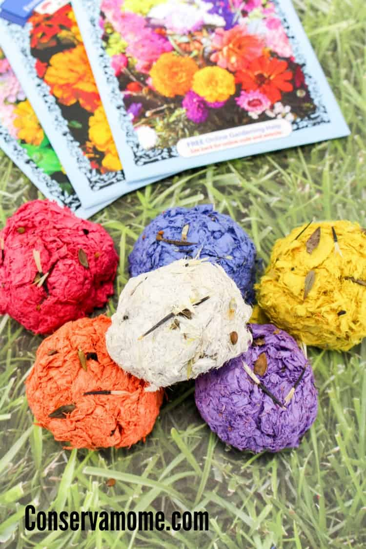 Have you ever wanted to know how to make garden seed bombs? Here's your chance! This fun and easy tutorial will be the perfect project for you and your kids this spring.