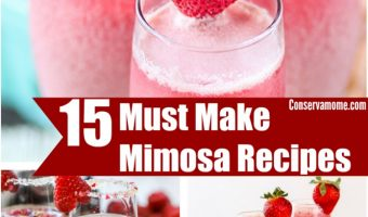 15 Must Make Mimosa Recipes