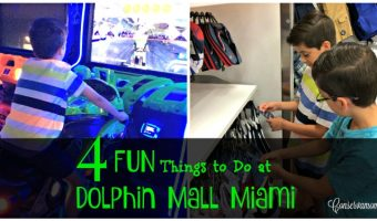 4 Fun Things to Do at Dolphin Mall Miami!