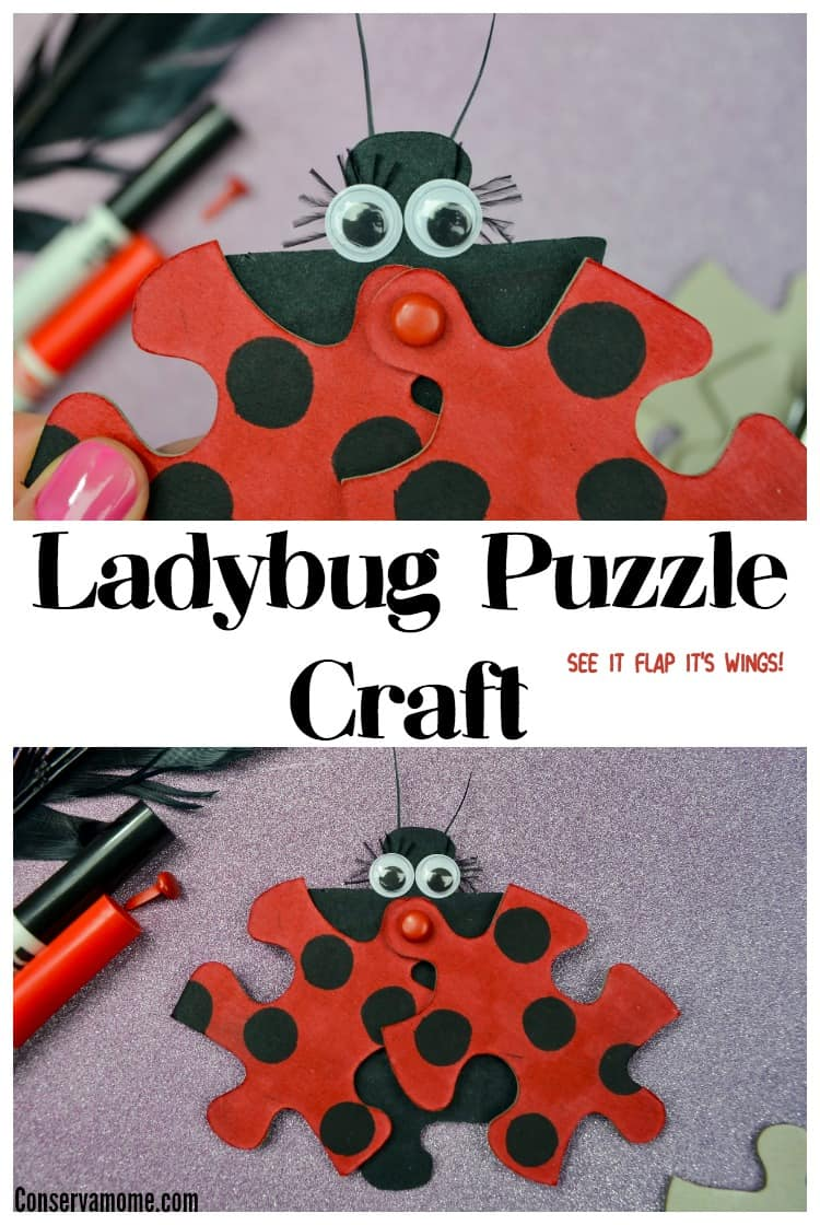 This fun Ladybug Puzzle Craft will be a huge hit with your kids. Best of all you'll only need a few items to make this moveable little friend!