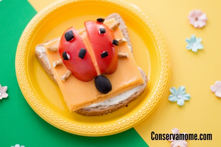 Get creative with this fun and easy to make Lady bug Open Faced Sandwich tutorial that will be a hit with your little (and big) kids! It's the perfect creative sandwich idea for kids.