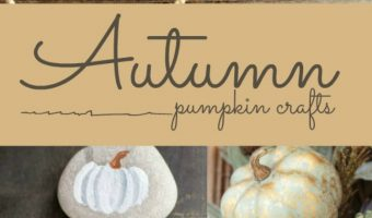 20 Autumn Pumpkin Crafts