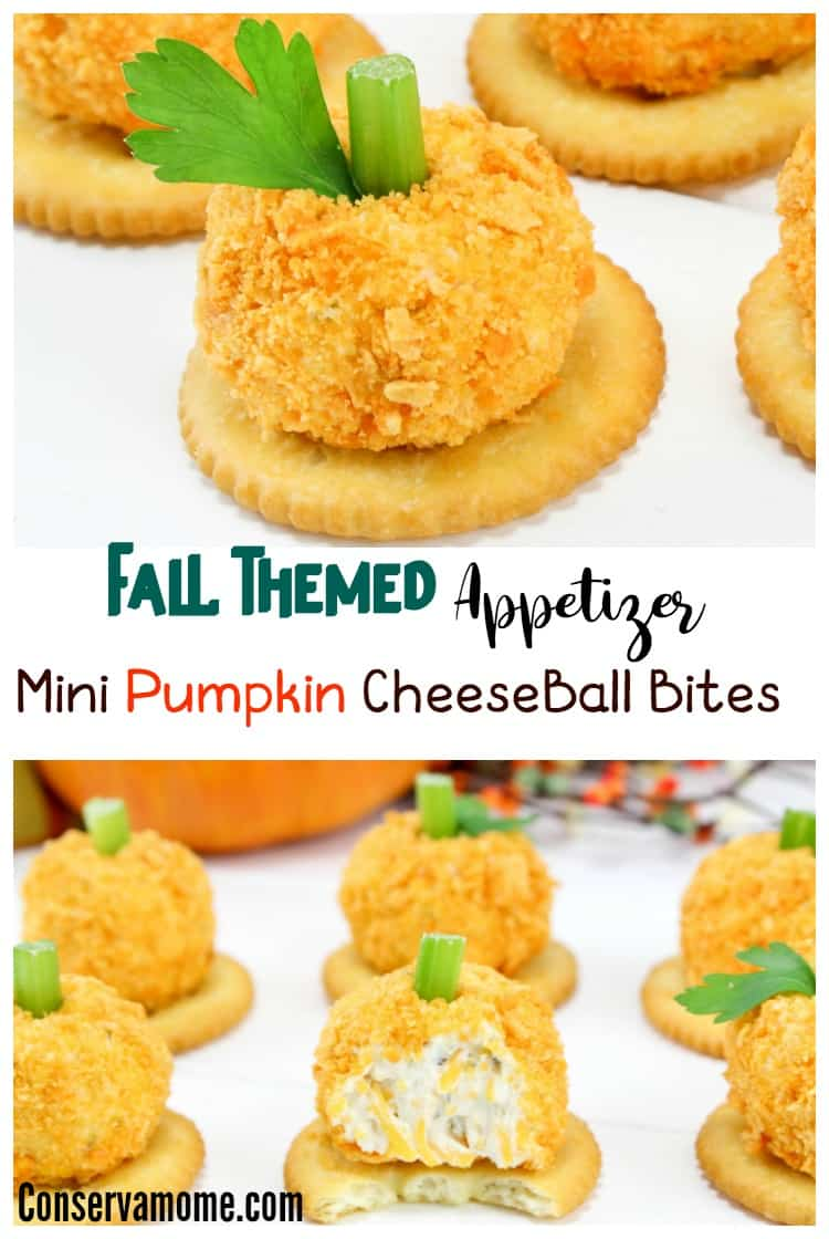 Fall Appetizer