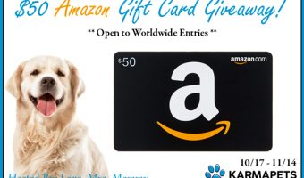 $50 Amazon Gift Card Giveaway ends 11/14