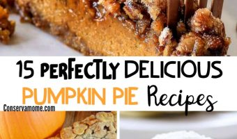 15 Perfect Delicious Pumpkin Pie Recipes