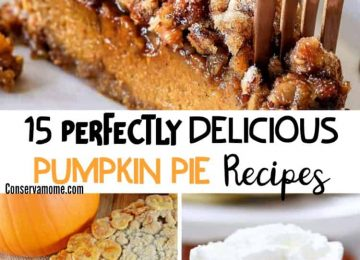 delicious pumpkin pie recipes