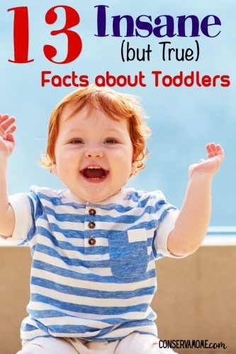 Facts about Toddlers