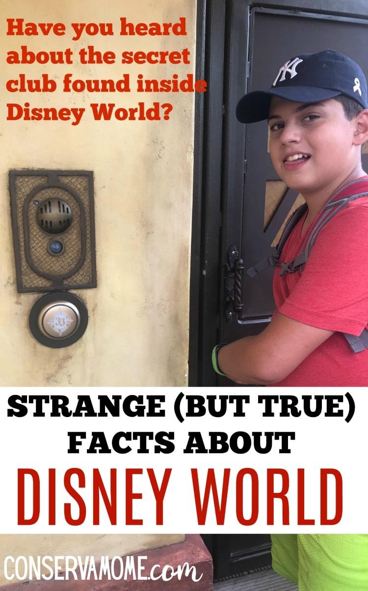 secret club at Disney World