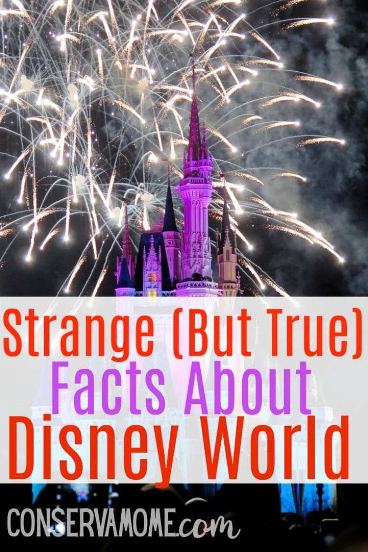 Strange (but true) facts about Disney World