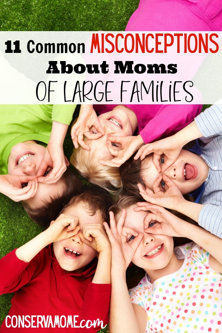 misconceptions about moms of large families