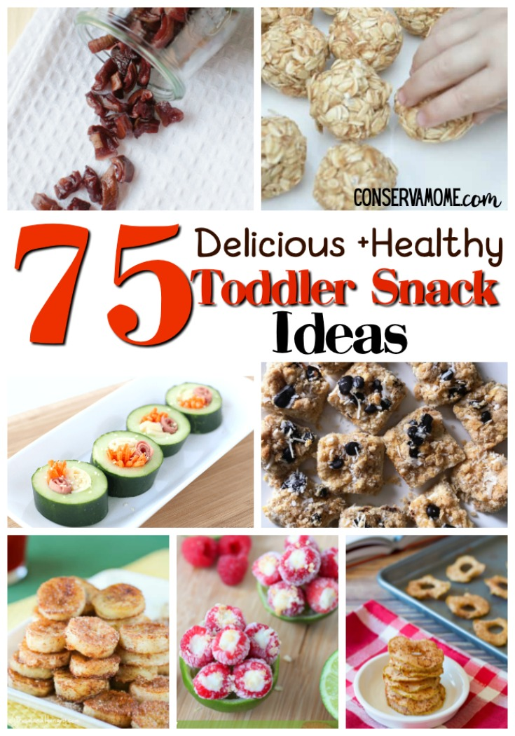 75 Healthy Toddler Snack Ideas