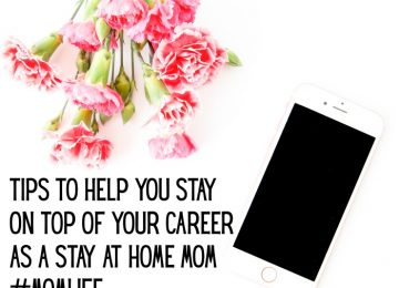 Stay at home mom with career