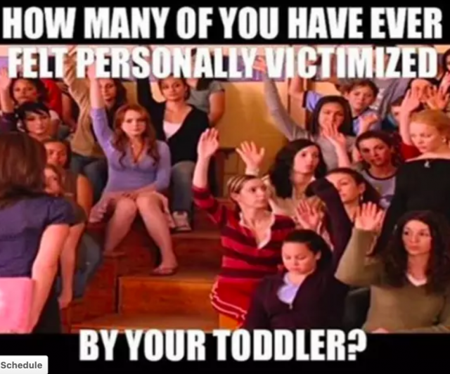 Toddler meme