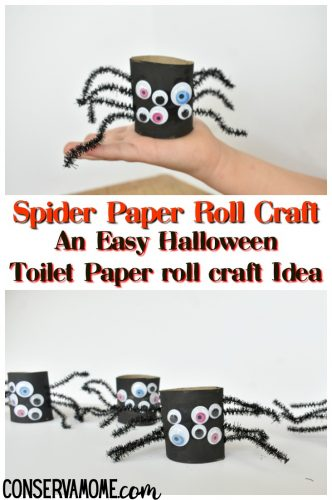 Spider paper roll craft