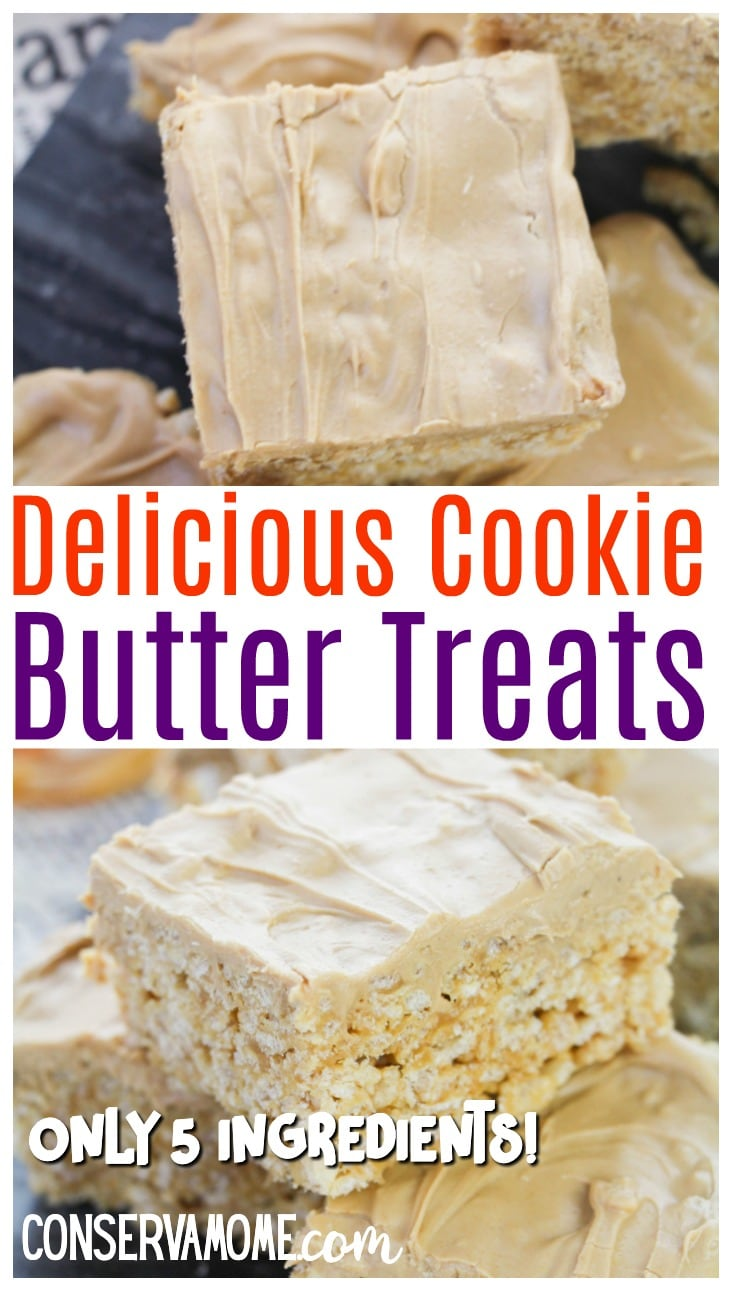 Delicious Cookie Butter bars