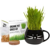 Cat Grass Growing Kit with Organic Seed Mix, Organic Soil and Cat Planter. Great Gift Idea for Fur Babies. Natural Hairball Control, Remedy for Cats. Natural Digestive Aid