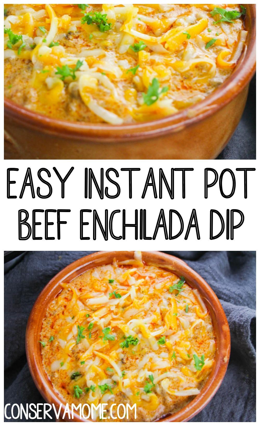 Easy Instant Pot Beef Enchilada Dip Recipe