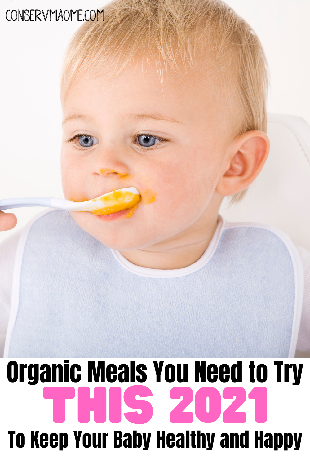 Organic meals you need to try this 2021 to keep your baby healthy and happy.