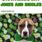 St.Patrick's Day Jokes