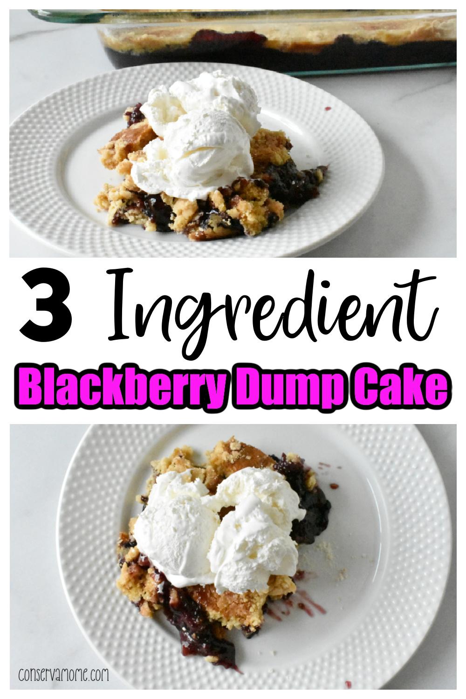 3 Ingredient Blackberry Dump Cake Recipe