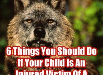 6 Things You Should Do If Your Child Is A Victim Of A Dog Bite