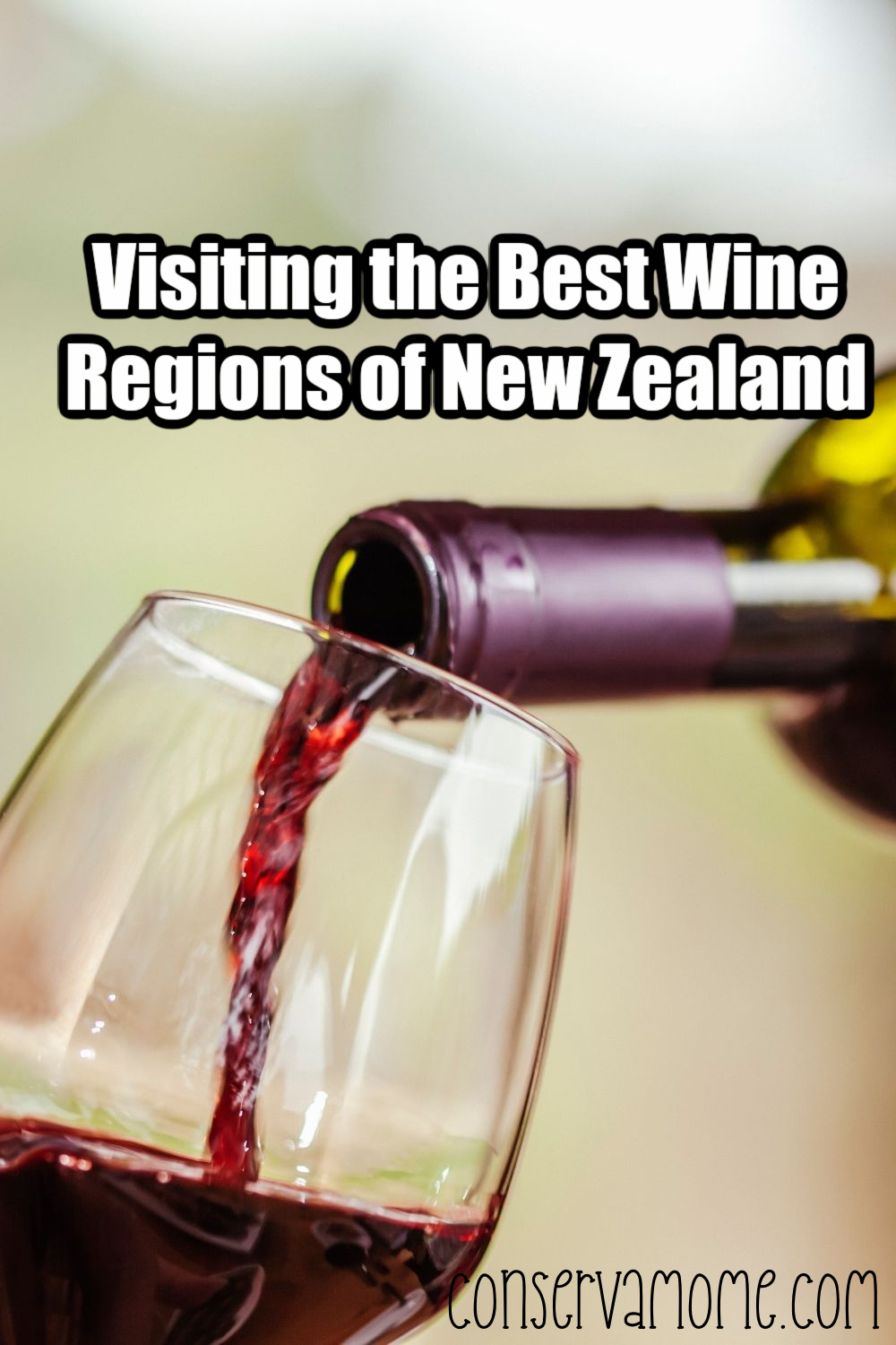 Visiting the Best Wine Regions of New Zealand