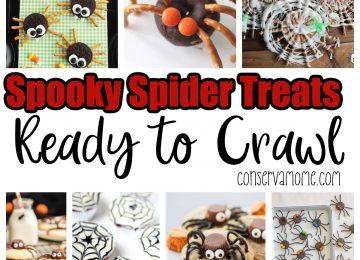 Spooky Spider Treats Ready to Crawl